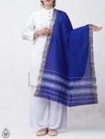Shop Online for Blue Pure Andhra Cotton Dupatta-UDS2775